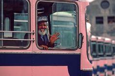 PINK buses in Bermuda