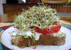 I haven't made my own sprouts since the 80s. Think I'll try it again with the grandkids :)