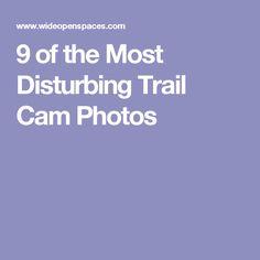9 of the Most Disturbing Trail Cam Photos