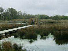 Atelier de paysages Bruel Delmar - Parc écologique de Saint Jacques