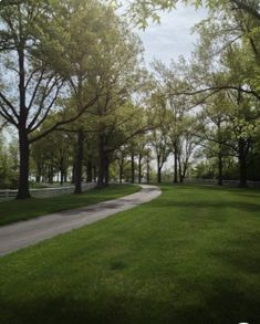 This would be the drive Allen Hamilton road in the carriage on when he first had dinner at the Holman home and met Emerine swinging on the gate Old Oak Tree, Ohio River, Outdoor Wedding Venues, Cincinnati, Aurora, Sidewalk, Hamilton, Gate, Irish