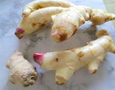 Grow ginger in your home and you will always have fresh, tender and fiberless ginger root on hand. #Ginger