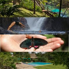 First post for #TravelTuesday: #Honeymoon Edition is the  Blancaneaux Lodge located in San Ignacio's Maya Mountains in #Belize!