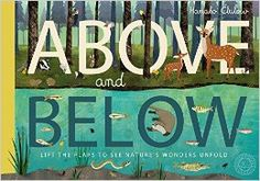 Above and Below: Amazon.co.uk: Patricia Hegarty, Hanako Clulow: 9781848575042: Books