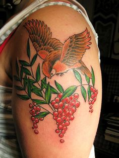 33 Best Colorful Bird Tattoos images | Colorful bird ...