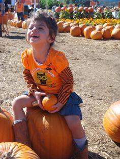Pumpkin-around!