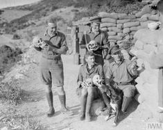 Officers of the 2nd King's Shropshire Light Infantry with skulls excavated during the construction of trenches and dugouts at the ancient Greek site of Amphipolis, 1916.   While digging trenches British soldiers uncovered parts of a 5th century BC tomb now known as the Lion of Amphipolis. Apparently the British soldiers attempted to steal the uncovered statue but were halted by a Bulgarian attack.