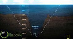 Palung adalah jurang yang berada di dasar laut . Palung yang terdalam di bumi adalah palung Mariana , barat laut Samudra Pasifik