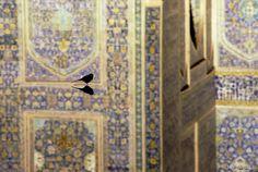 Bird in Iran by Jay Maisel. Print Portfolio | Jay Maisel Photography