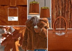Fall 2016 ...  Potter's ClayPANTONE 18-1340  PANTONE 18-1340 Potter's Clay has an added degree of sophistication and layering.      Elements of russet Orange in its undertones, gives a grounded feeling that's anything but flat     Neutral earth tone; expected for fall and winter palette     A shade with real substance; a strong foundation