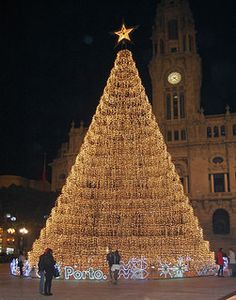 This giant Christmas tree is located in Portugal, Porto downtown, Av. dos Aliados, in front of Porto City Hall.