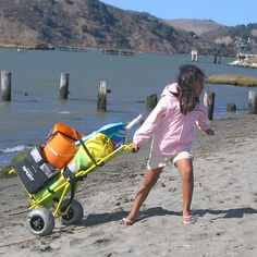 Wheeleez Mini Folding Beach Cart | Beach Carts — Carts On The Go || $145