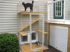 Resultado de imagen para casa para gato en exteriores