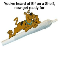 Scooby on a dooby Funny Adult Memes, Funny Black Memes, Stupid Funny Memes, Funny Relatable Memes, Wtf Funny, Funny Cute, Hilarious, Funny Shit, Memes Humor