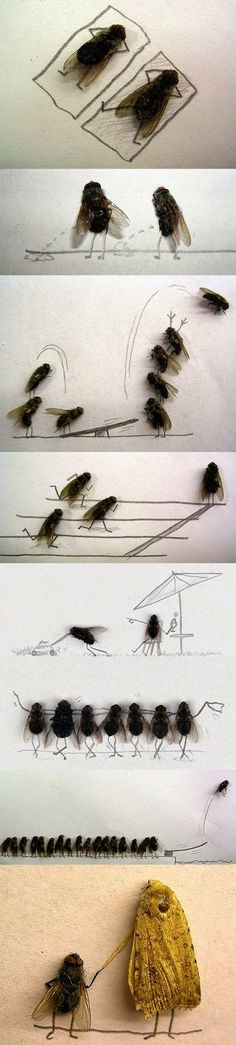 Sometimes my sense of humor is just plain warped. LOL at the Fly Art. :D