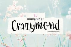 cool Crazymond font family  CreativeWork247 - Fonts, Graphics, Themes, Temp...
