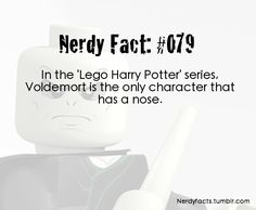 Irony at its finest Harry potter humor Harry Potter Facts, Lego Harry Potter, Harry Potter Love, Harry Potter Fandom, Hogwarts, Slytherin, No Muggles, Voldemort, Mischief Managed