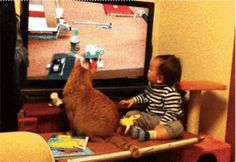These two sibs. | 42 Pictures That Will Restore Your Faith In Cute