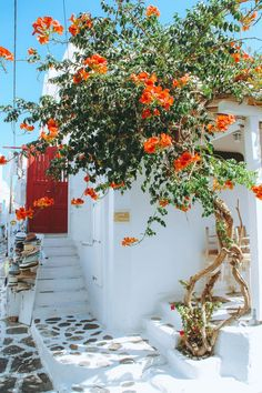 Gorgeous vacation setting. We can dream, can't we?! #inspo #vacation #greece Greece Vacation, Greece Travel, Vacation Spots, Vacation Resorts, Vacation Destinations, Vacations, Mykonos Town, Mykonos Greece, Skiathos