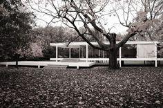 Clásicos de Arquitectura: Casa Farnsworth / Mies van der Rohe (8)