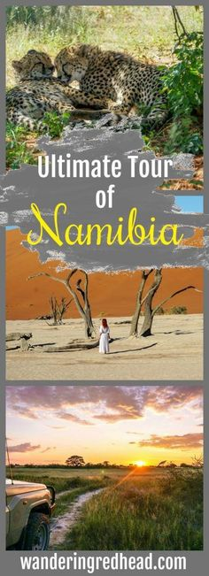 The ultimate 10 day tour of Namibia! The two great deserts of southern Africa meet here, creating the kinds of sand dunes only found in dreamscapes. Namibia is the oldest desert in the world, evidenced by its rust-colored sand and monstrous dunes. The sun rises and sets, painting the world with a new palette every few hours. This has been the status quo here for millions of years, #namibia #travel #tour #africa