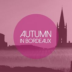 With Harvest Scene, the Bordeaux wine region is buzzing with energy!
