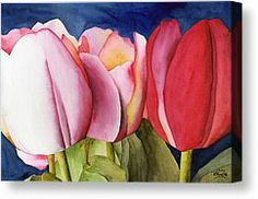 Powers ken tulips - Google Search