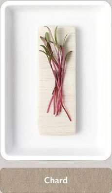 Love Chard! Micro Herbs, Plants, Diy, Bricolage, Do It Yourself, Plant, Homemade, Diys, Planets