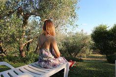 Un agriturismo a Capalbio a 10 minuti dal Giardino dei Tarocchi