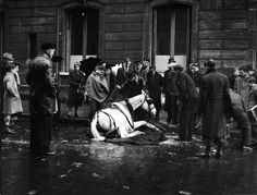 Atelier Robert Doisneau |Robert Doisneau's photo archives. - Horses