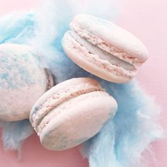 cotton candy #macarons  today at #jennaraecakes #winnipegbakery open 12-6