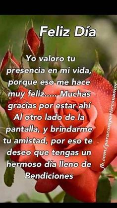 Funny Love Messages For Him Good Morning 15 Trendy Ideas Good Morning In Spanish, Good Morning Quotes For Him, Morning Thoughts, Good Morning Messages, Good Morning Greetings, Night Messages, New Quotes, Funny Quotes, Prayer Quotes