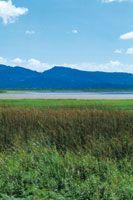 La laguna de Fúquene es la más grande de la planicie aluvial del valle de Ubaté y Chiquinquirá. Sin embargo, con el paso del tiempo las plantas acuáticas han reducido el espejo de agua.