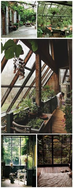 Pin by julie marie on home // earthship etc (With images) Interior Exterior, Exterior Design, Build A Greenhouse, Greenhouse Ideas, Greenhouse Wedding, Indoor Greenhouse, Portable Greenhouse, Greenhouse Attached To House, Miniature Greenhouse