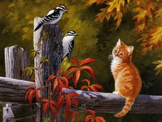 paisajecon-aves