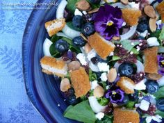 Blueberry Chicken Salad with Goat Cheese, Almonds & Cherry Malbec Vinaigrette Blueberry Goat Cheese, Blueberry Chicken, Blueberry Salad, Salad Recipes Gluten Free, Real Food Recipes, Goat Cheese Salad, One Pan Meals, Toasted Almonds, Stuffed Whole Chicken