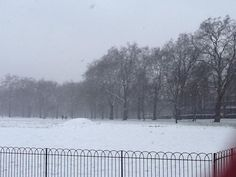 West side of Green Park towards Hyde Park on a snowy afternoon!