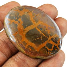 Septarian Stone, Minerals And Gemstones, Rocks And Gems, Opals, Fossils, Agate, Texas, Auction, Dragon