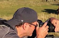 """11 Tips for Shooting Great Wildlife Photos – PictureCorrect. Video: Jay P. Morgan. """"Armed with his Tamron 150-600mm lens and a liberal amount of advice from his father (who shot for National Geographic), Morgan arrived at Yellowstone National Park and shared 11 tips for wildlife photography..."""" http://www.picturecorrect.com/tips/11-tips-for-shooting-great-wildlife-photos/"""