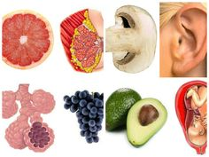 The Benefits Of The Fruits Of The Organs.Some organs of the fruits. they are Interesting or useful . Health Ledger, Lemon Benefits, Health Benefits, Green Bodies, Detox Recipes, Detox Foods, Ate Too Much, Most Nutritious Foods, Juicing For Health