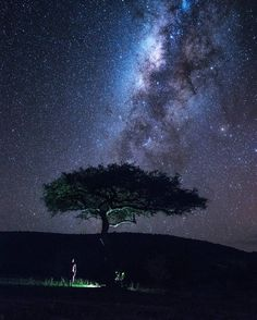 Cosmic Quotes, Milky Way, Kenya, Astronomy, Northern Lights, Country, Awesome, Places, Travel