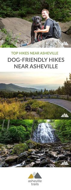 Dog-friendly hikes near Asheville: our favorites - Asheville Trails -You can find Asheville and more on our website.Dog-friendly hikes near Asheville: our favorites -. Hiking Dogs, Hiking Trails, Hiking Places, Road Trip With Dog, Gatos Cat, Dog Friendly Hotels, North Carolina Mountains, Nc Mountains, Appalachian Mountains