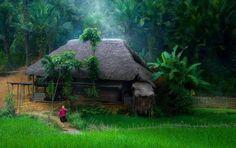 Ha Giang Trekking tour and Hanoi Tour 8 days - Vietnam Typical Tours Kerala Houses, Kerala Tourism, Designer Handbags On Sale, Kerala India, Tourist Places, Vietnam Travel, Incredible India, Nature Photography, Beautiful Places