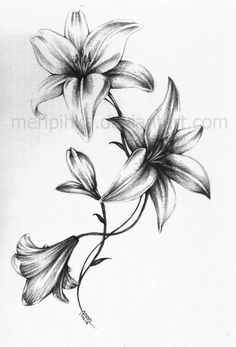 Best black and white tattoo of lilies <3