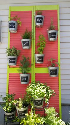 Old louvered bifold door. Some paint. Galvaized buckets. A little bracing. Hanging container herb garden. Fun project.