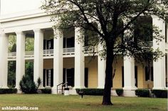 Someday I will do a tour of Southern plantations.  Their architecture fascinates me.