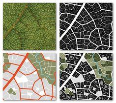 Leaf-city, part 1 | Flickr - Photo Sharing!