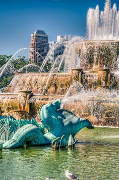Dedicated in 1927, Chicago's Buckingham Fountain is one of the largest fountains in the world.  Check! (1996)