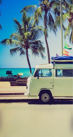 California summer dream
