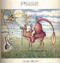 The Codex Seraphinianus (Luigi Serafini)